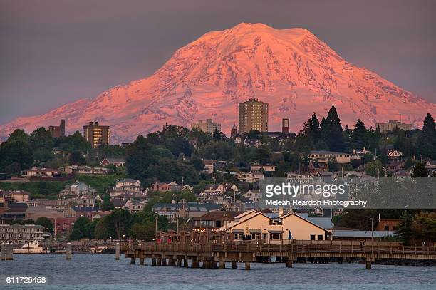 mount rainier - washington state stock pictures, royalty-free photos & images