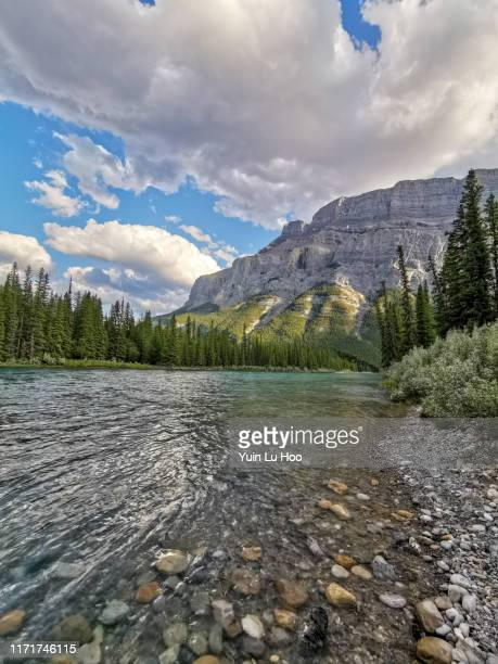 mount rundle and bow river - bow river stock pictures, royalty-free photos & images