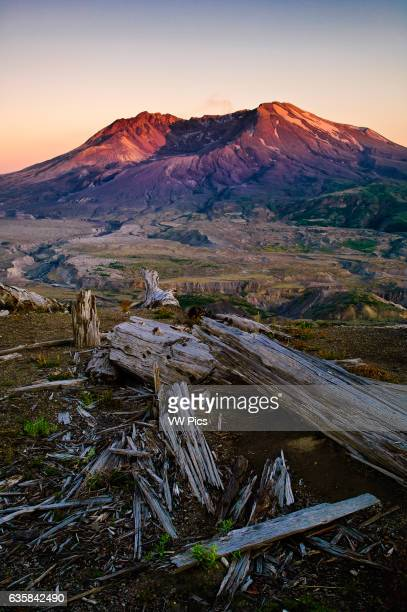 Mount Saint Helens at sunset from Loowit Trail and Viewpoint on Johnston Ridge Mount St Helens National Volcanic Monument Washington