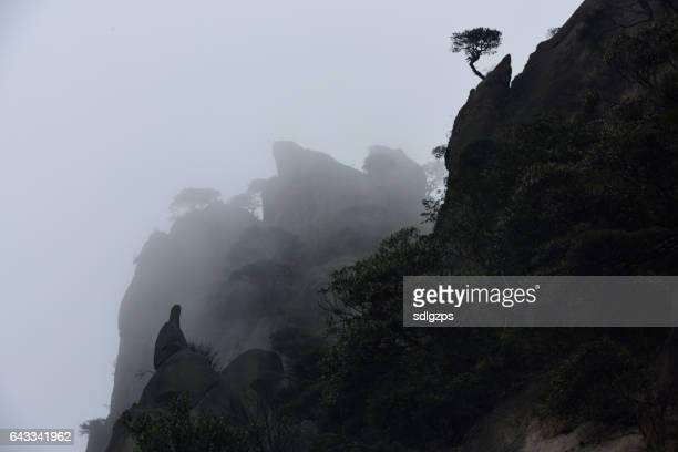 Mount Sanqingshan of China