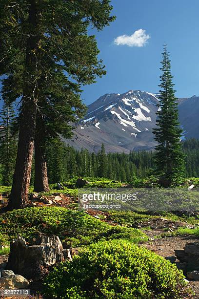 mount shasta mountain view - mt shasta stock pictures, royalty-free photos & images