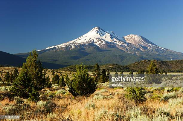 mount shasta - mt shasta stock pictures, royalty-free photos & images