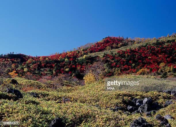 Mount Shirane, Kusatsu, Agatsuma, Gunma, Japan