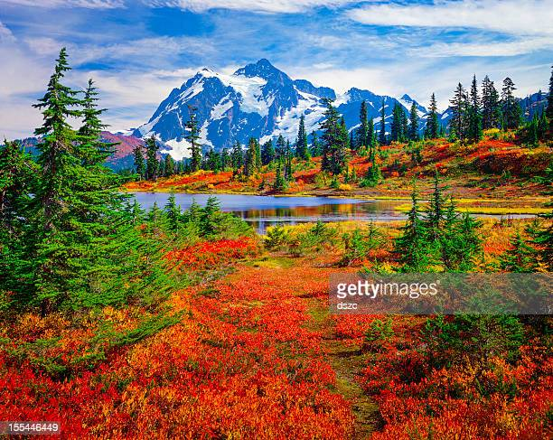 mount shuksan, picture lake, washington, brilliant carpet orange autumn colors - washington state stock pictures, royalty-free photos & images