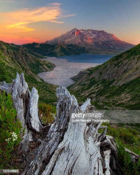 mount st. helens and spirit lake at sunset - mount st. helens stock pictures, royalty-free photos & images