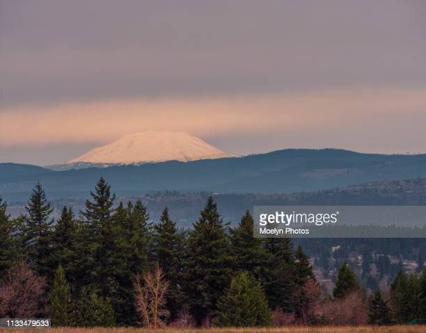 mount st helens from powell butte - mount st. helens ストックフォトと画像