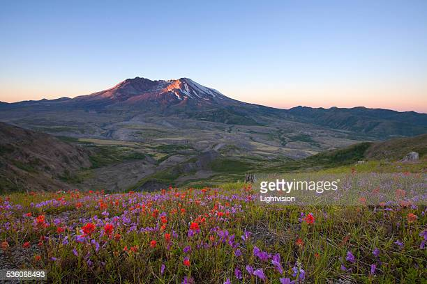 mount st helens, washington - castle rock colorado stock pictures, royalty-free photos & images