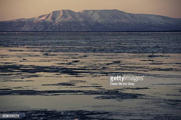 mount susitna, point woronzof park; anchorage, alaska, united states of america - mt. susitna stock pictures, royalty-free photos & images