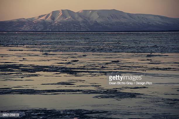 mount susitna, point woronzof park - mt. susitna stock pictures, royalty-free photos & images