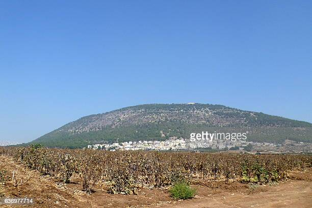 Mount Tabor and at its foot, the village of Daburiyeh and fields