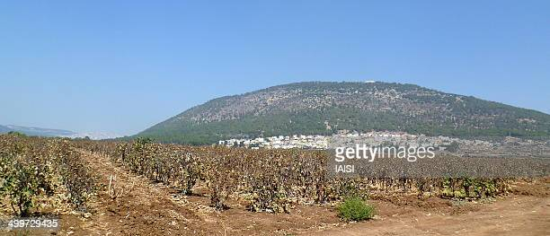 Mount Tabor in Lower Galilee