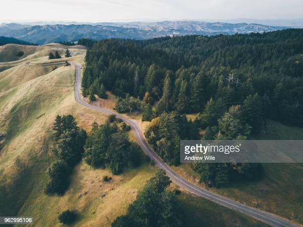 Mount Tamalpais Windy Roads