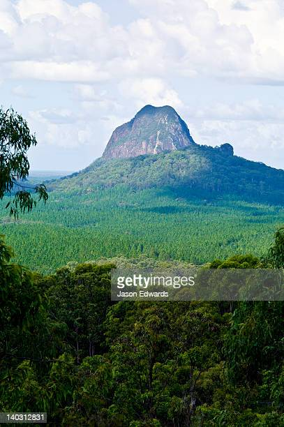 an eroded ancient volcanic plug rises above a forested plain. - glass house mountains stock pictures, royalty-free photos & images