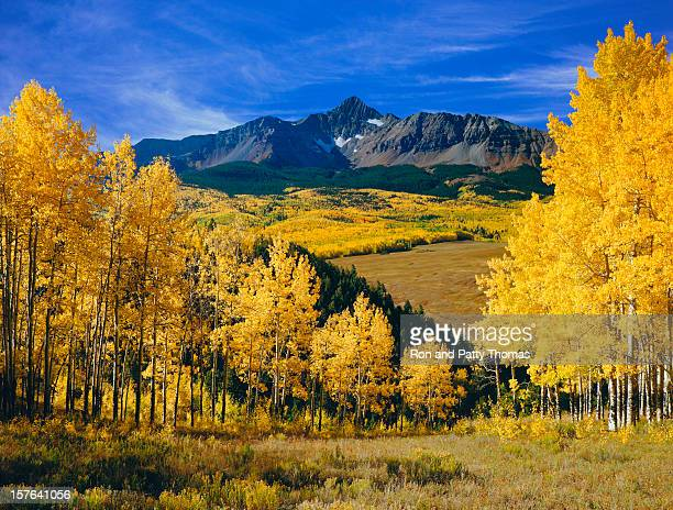 mount wilson with autumn aspen trees - mt wilson colorado stock photos and pictures
