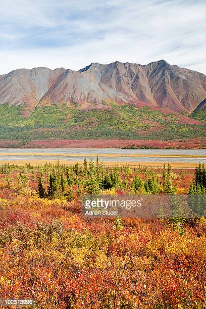 mountain along susitna river - mt. susitna stock pictures, royalty-free photos & images