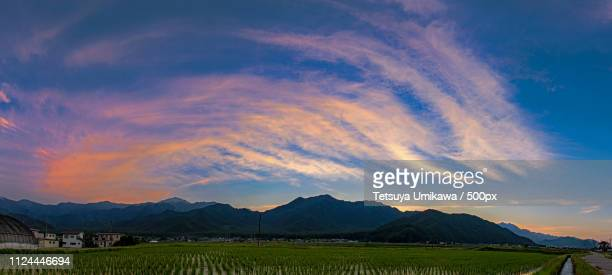 a mountain and a rice field and cloud of dusk - 長野県 ストックフォトと画像