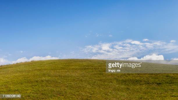 mountain and grassland scenery on the qinghai-tibet plateau under blue sky and white clouds - grass area stock pictures, royalty-free photos & images