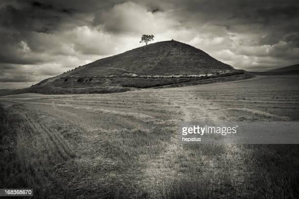 Montagne et arbre