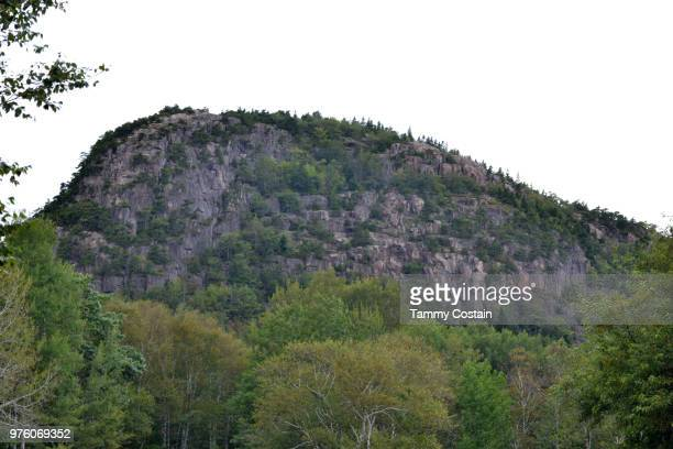 mountain beauty bar haror, maine - tammy bar stock pictures, royalty-free photos & images