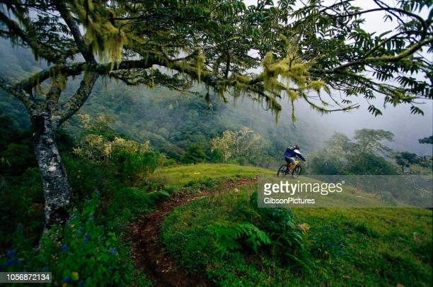 mountain bike costa rica - costa rica stock photos and pictures