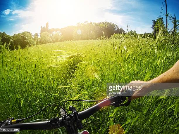 Mountain Bike: immersed in wild nature
