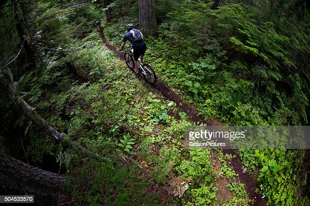 Mountain Bike Racers