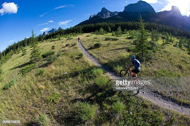mountain bike racers - cross country cycling stock photos and pictures
