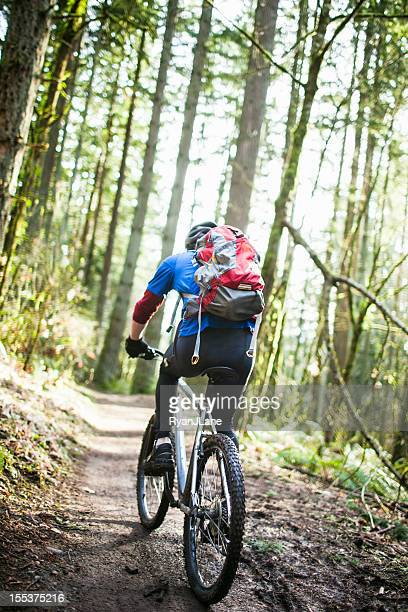 Mountain Bike Ride on Forest Trail