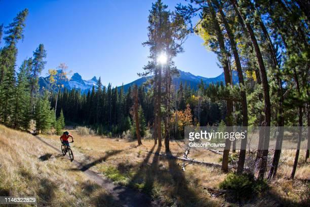 マウンテンバイクライダー - 男子自転車 ストックフォトと画像