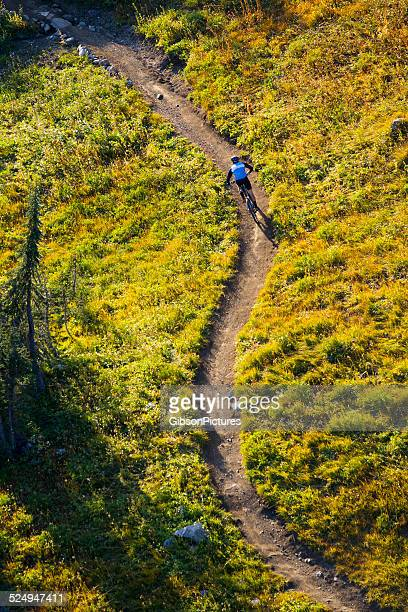 mountain bike rider - s shape stock photos and pictures