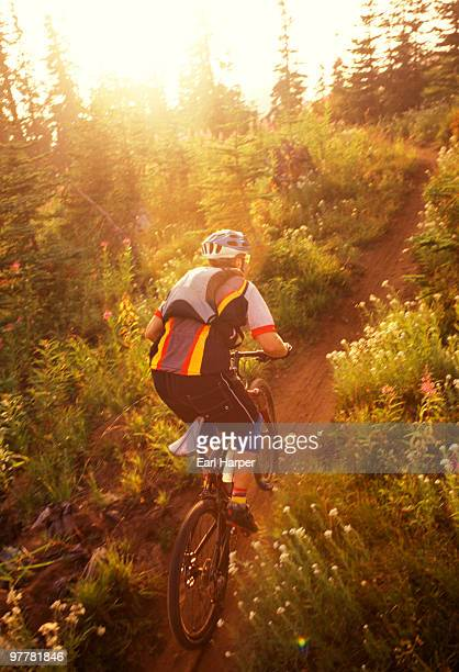 A mountain bike rider rides up a trail just outside Mount Rainier National Park at sunset.