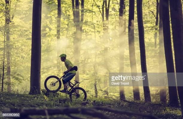 Mountain bike riding in the forest