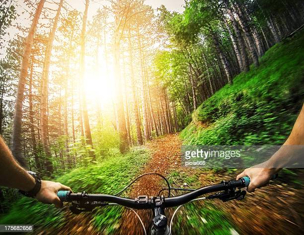 Mountain Bike: Single Trail in the Forest