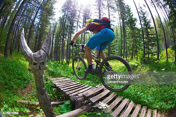 Mountainbike-Schädel Trail