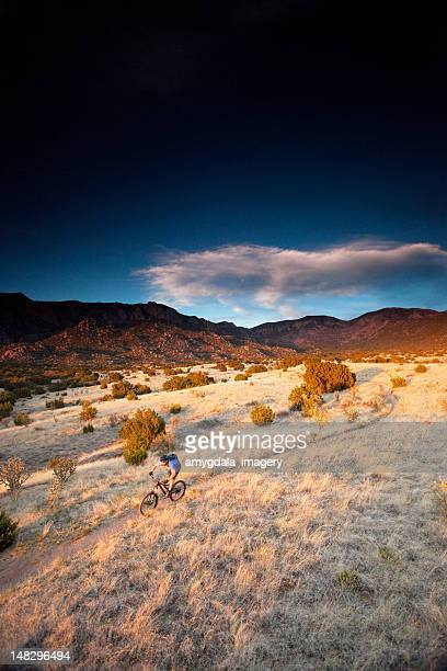 mountain bike sunset - western juniper tree stock pictures, royalty-free photos & images