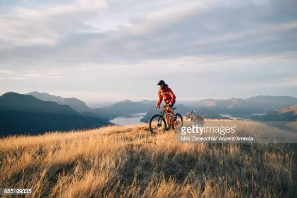 mountain biker ascends mountain ridge, with dog - mountain biking stock pictures, royalty-free photos & images