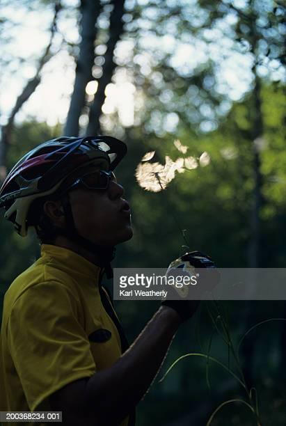 mountain biker blowing on dandelion - feuille de pissenlit photos et images de collection