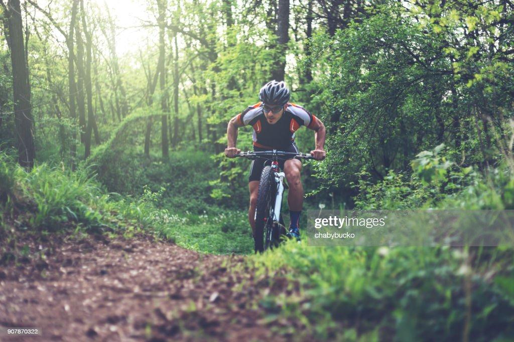 Ciclista de montaña, escalada en el bosque : Foto de stock