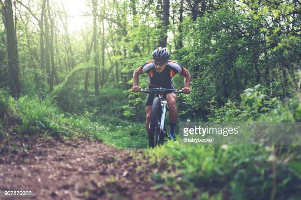 Mountain biker climbing in the woods