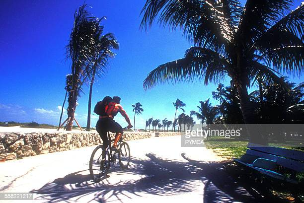 A mountain biker cycling in a park on a sunny day Ocean drive Miami Florida USA 2000s