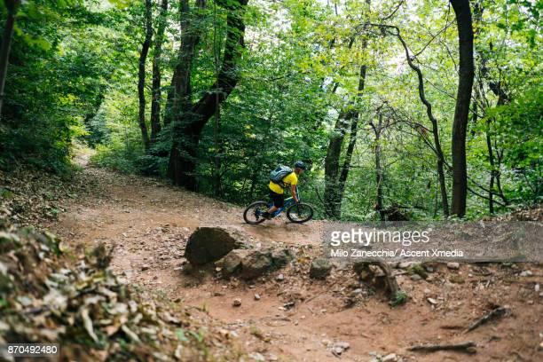Mountain biker descends trail through forest