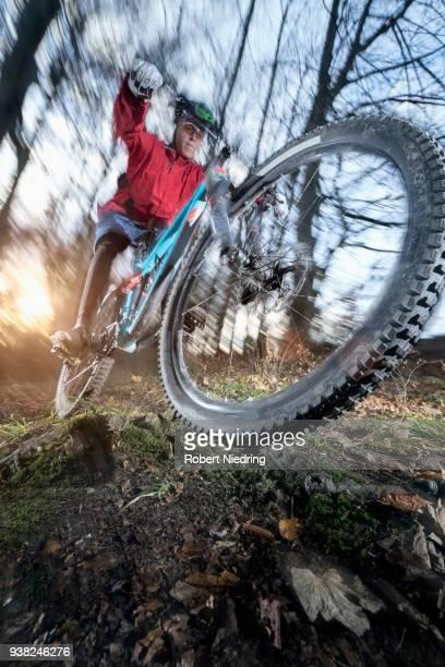 Mountain biker doing a wheelie over roots, Bavaria, Germany
