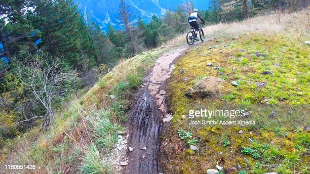 mountain biker follows alpine track, through forest - ascent xmedia stock pictures, royalty-free photos & images