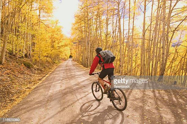 mountain biker in aspens - aspen tree stock pictures, royalty-free photos & images