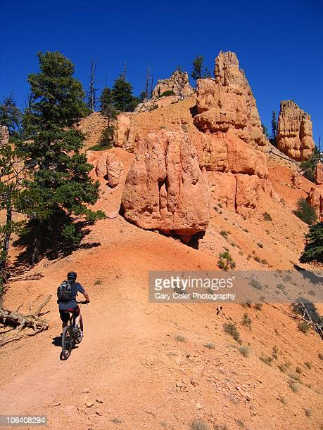 mountain biker on red rock trail - gary colet stock pictures, royalty-free photos & images
