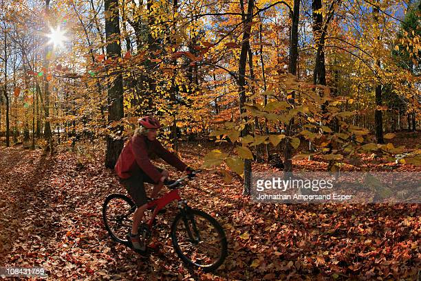 Mountain biker riding through autumn leaves, Adirondack Park, New York State, USA