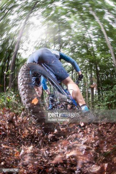 Mountain biker speeding on forest track, Bavaria, Germany