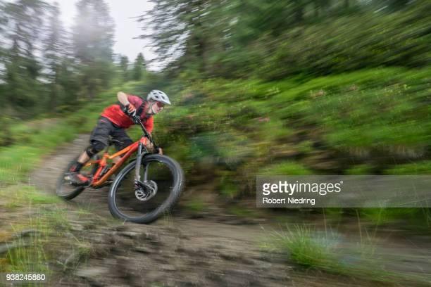 Mountain biker speeding on track through forest path, Trentino-Alto Adige, Italy