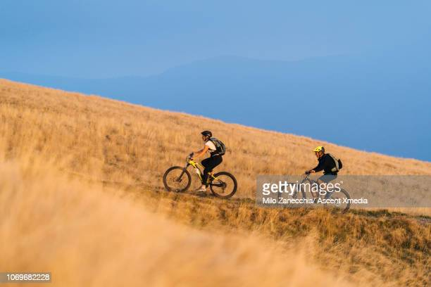 mountain bikers follow alpine track, through mountain meadow - focus on background stock pictures, royalty-free photos & images