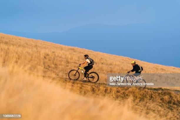mountain bikers follow alpine track, through mountain meadow - focus op achtergrond stockfoto's en -beelden